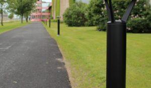 CREE Pathway